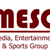 Media, Entertainment & Sports Group (FT)'s logo
