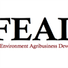 Food, Environment, Agribusiness and Development Group (FEAD) (FT)'s logo