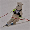 Bowdoin Club Alpine Ski Team's logo