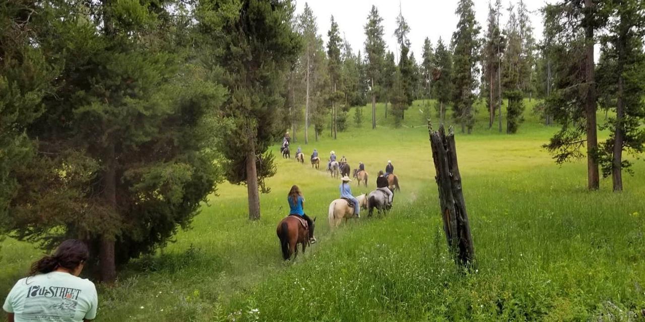 Horseback Rides at Harriman State Park Event Logo