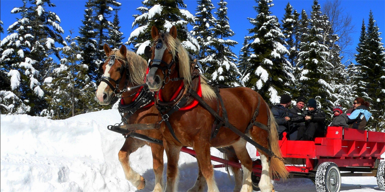 Sleigh Ride and Dinner Event Logo