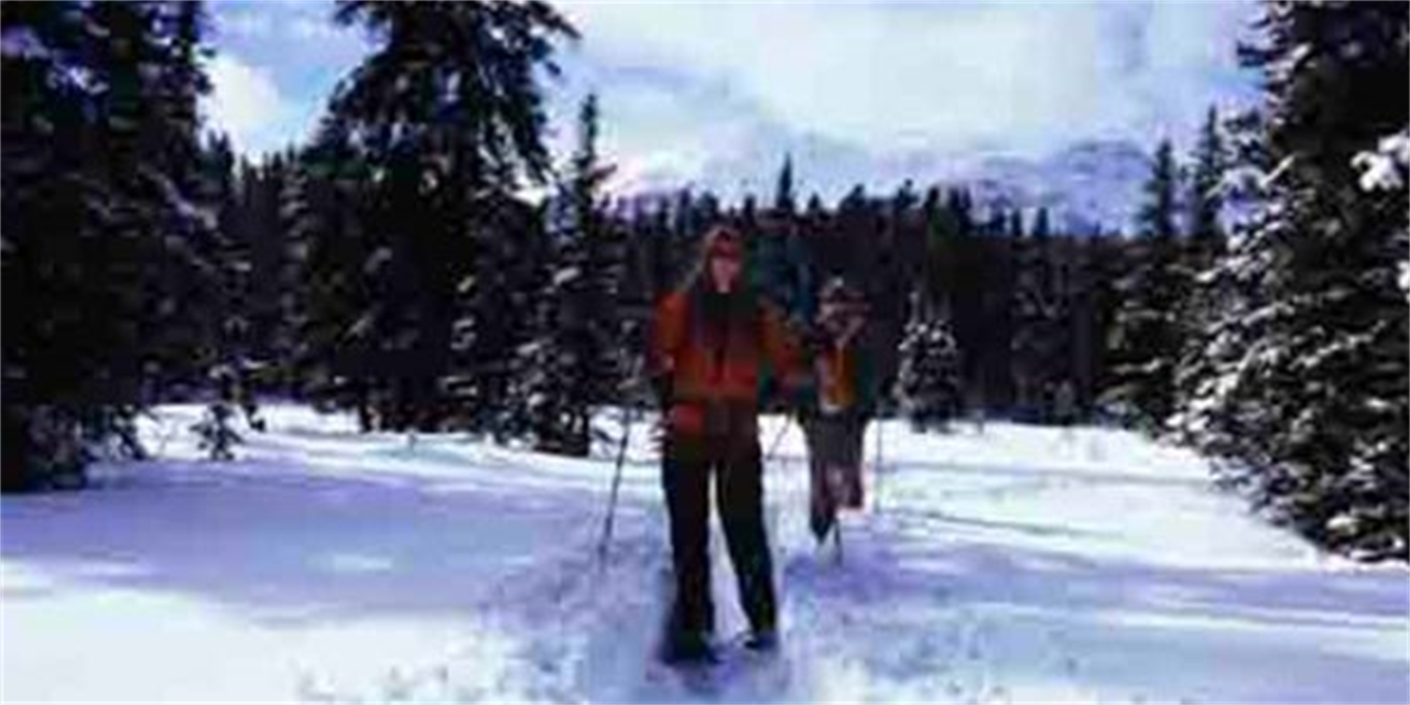 Snowshoeing Event Logo