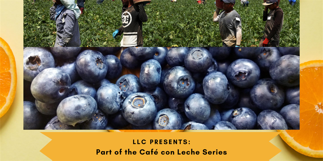 Café con Leche Series: Food Insecurity, Local Ways to Advocate