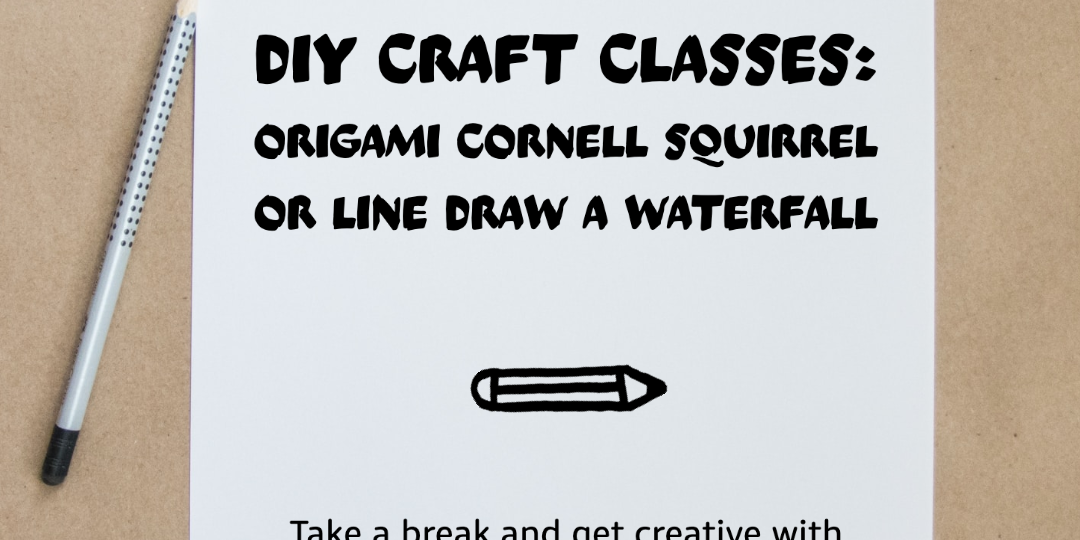 Q Week: DIY Craft (origami squirrel or line drawing of an Ithaca waterfall!)
