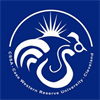 Chinese Students and Scholars Association's logo