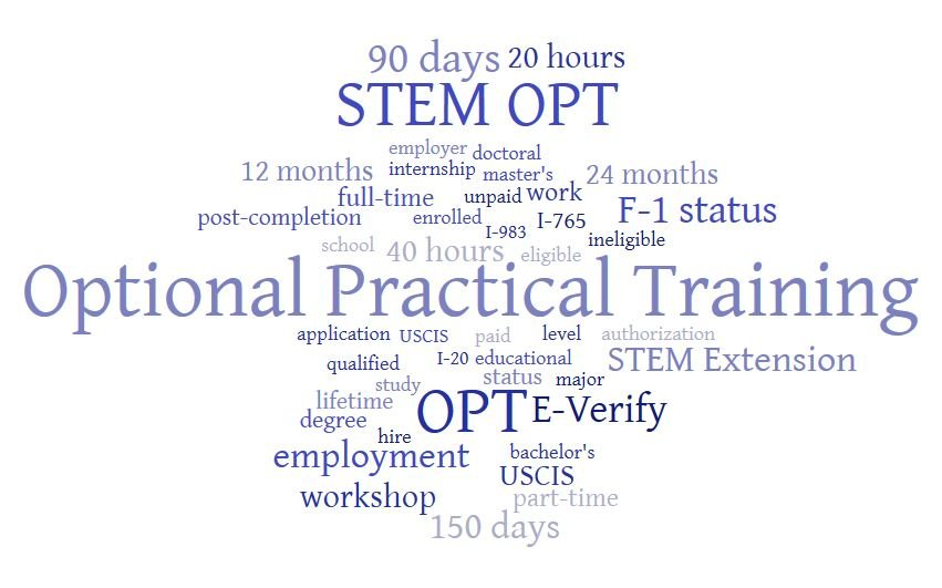 opt wordle