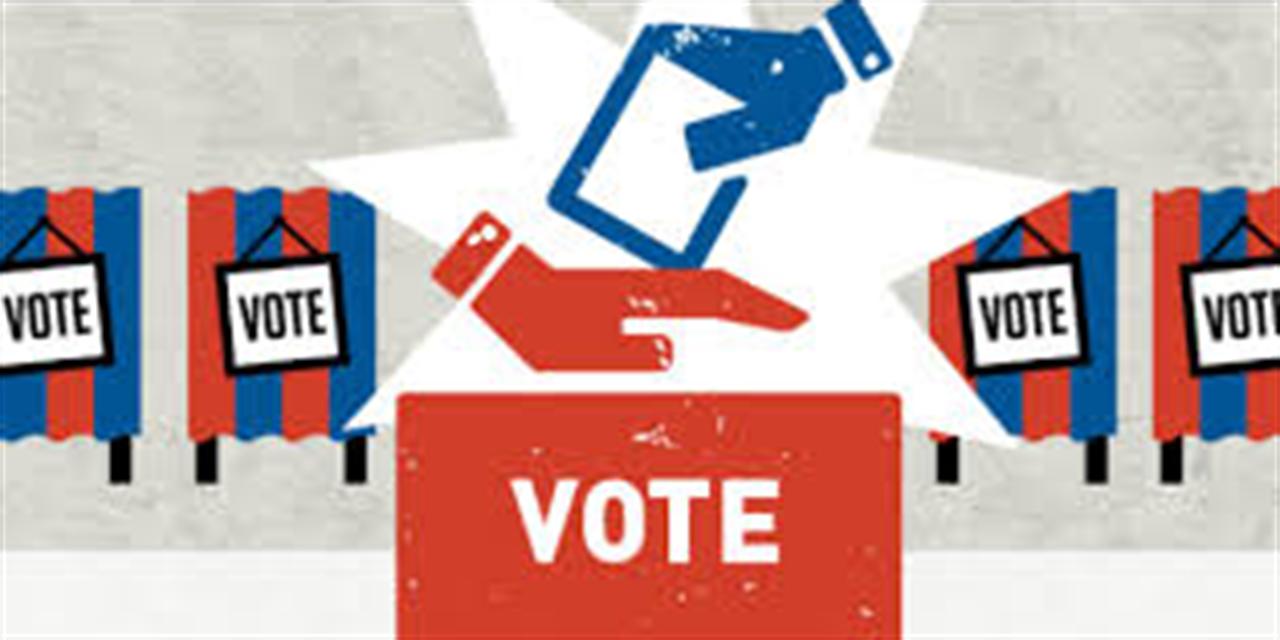 Understanding Local Politics (virtual panel discussion) Event Logo
