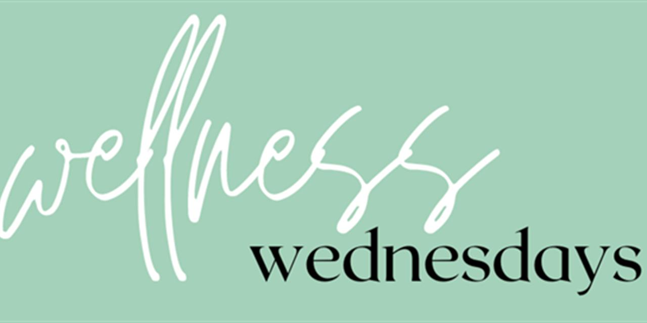 Wellness Wednesday (Sober Curious) Event Logo
