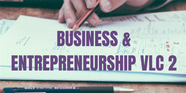 Business & Entrepreneuership VLC Group 2 Group Banner