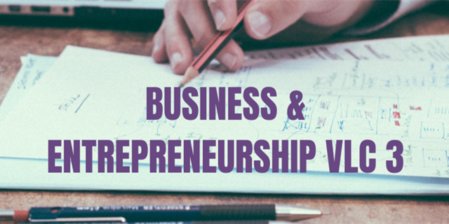 Business & Entrepreneurship VLC Group 3 Group Banner