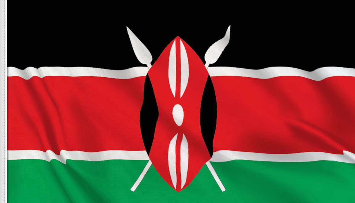 Understanding the African Economy: A case study of Kenya