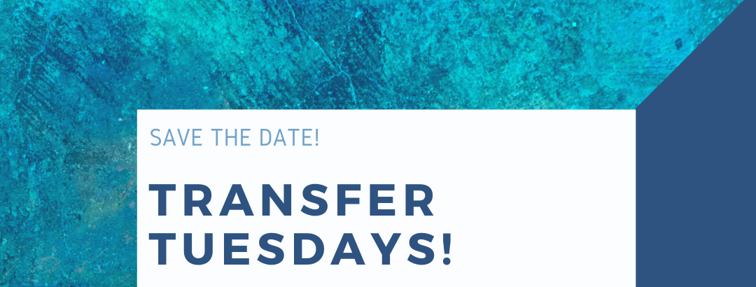 Transfer Tuesdays! Connect with Campus Resources