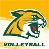 Men's Club Volleyball's logo
