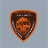 Department of Public Safety's logo