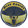 Blue Eagles Skydiving Team's logo