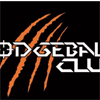 RIT Dodgeball Club's logo