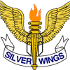 Silver Wings's logo