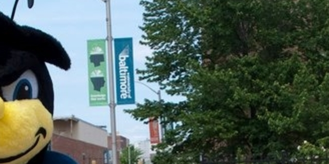 Center for Student Engagement and Inclusion Group Banner
