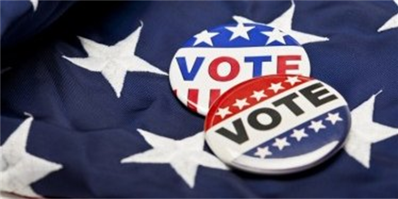 Election Day Bash: Self Care and Support During the 2020 Election Event Logo