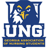 Georgia Association of Nursing Students (UNG) Group Logo