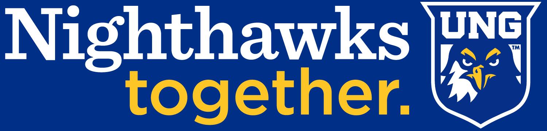 Nighthawks Together Graphic