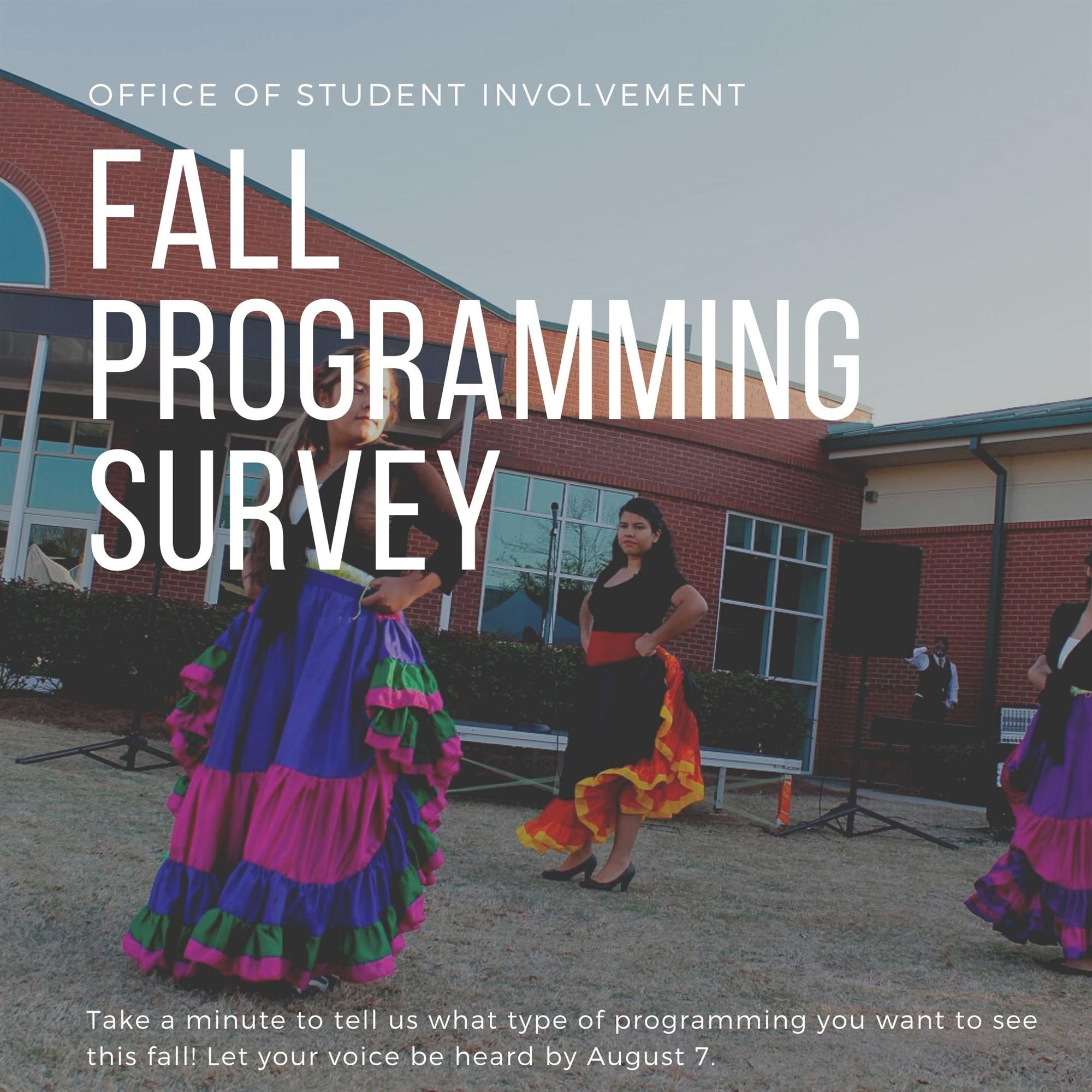 Fall Programming Survey