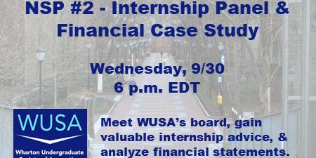 NSP #2 - Internship Panel & Financial Case Study