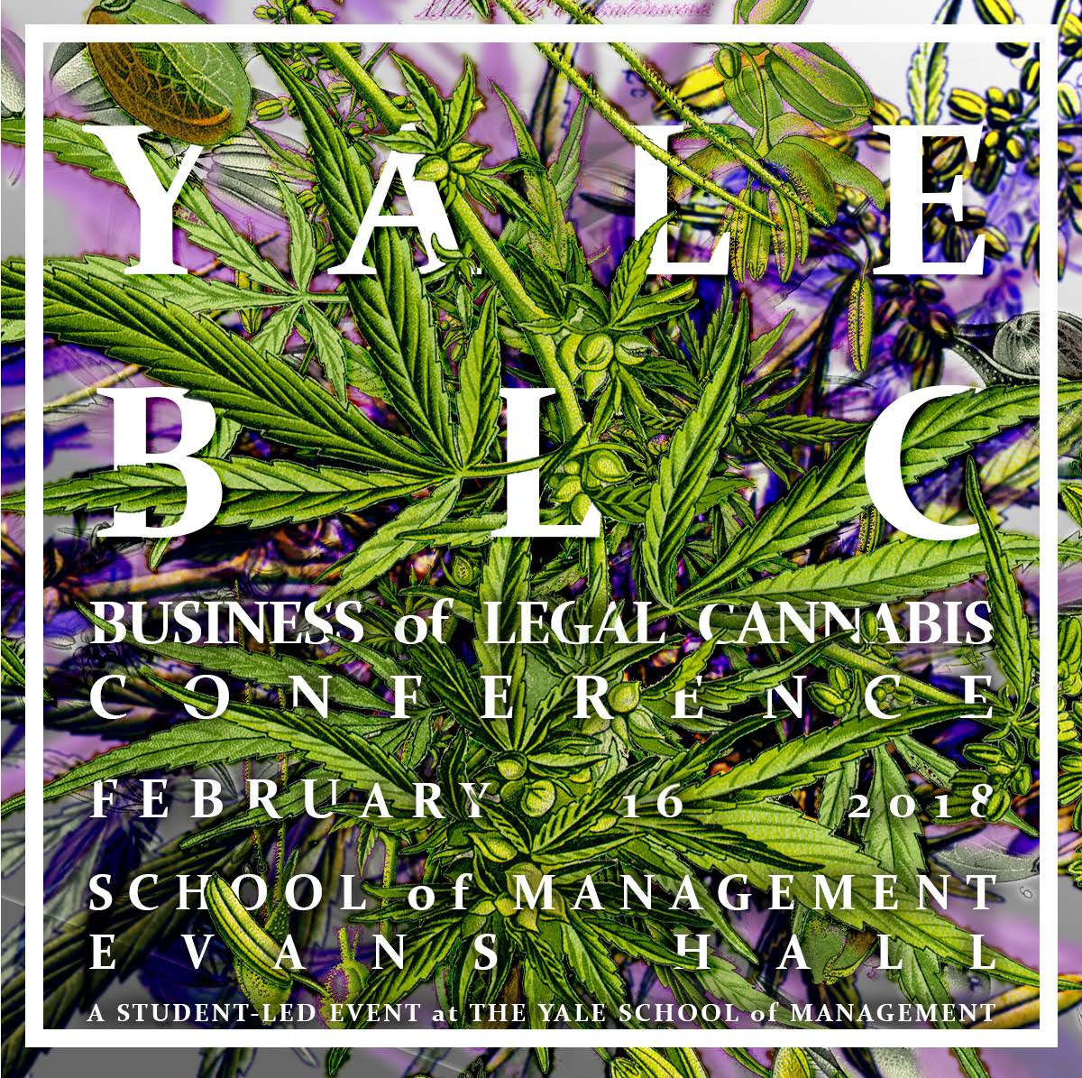 Yale Business of Legal Cannabis Conference
