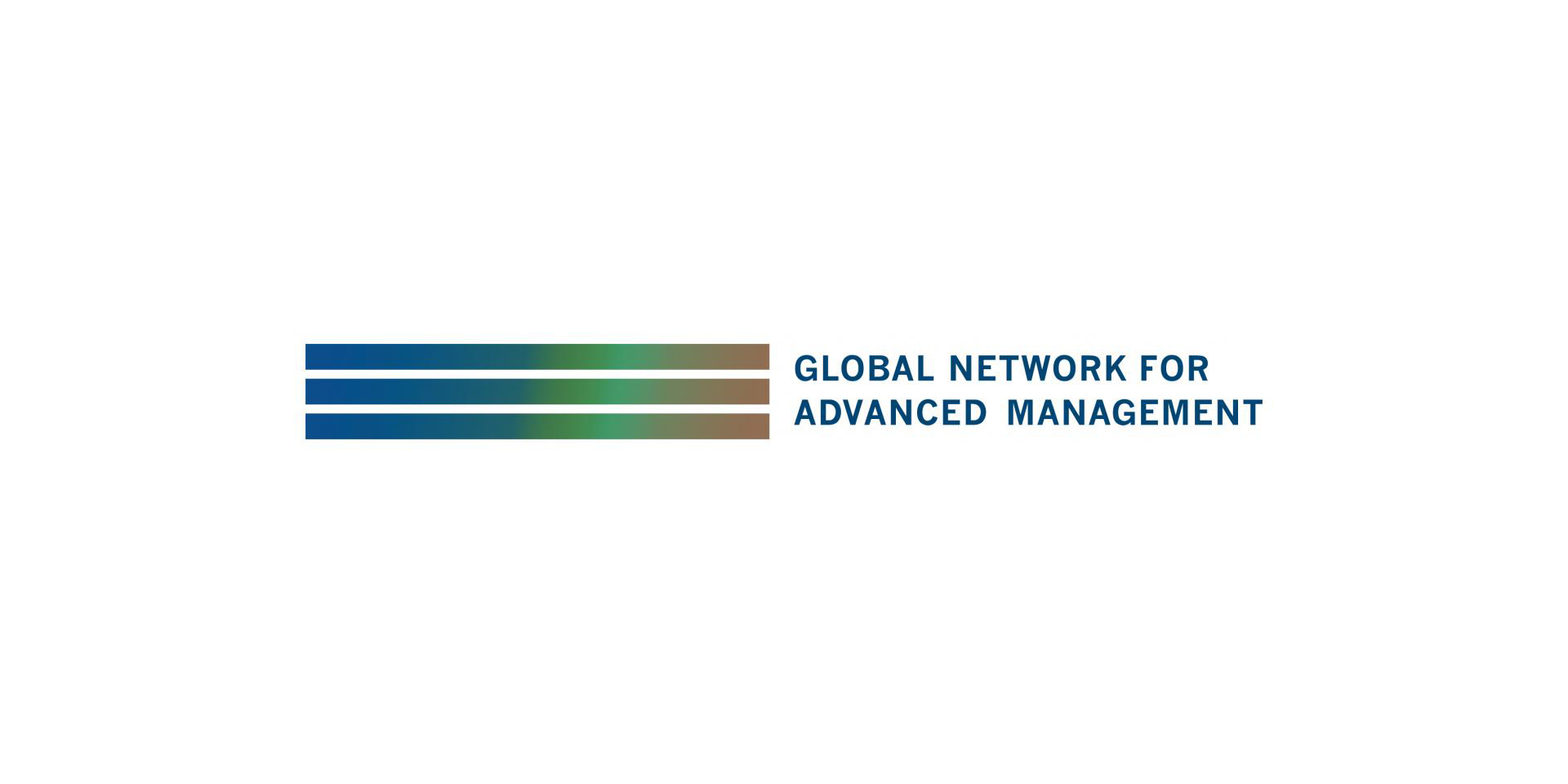 [Global Network] The Role of Capital Markets for Emerging Countries
