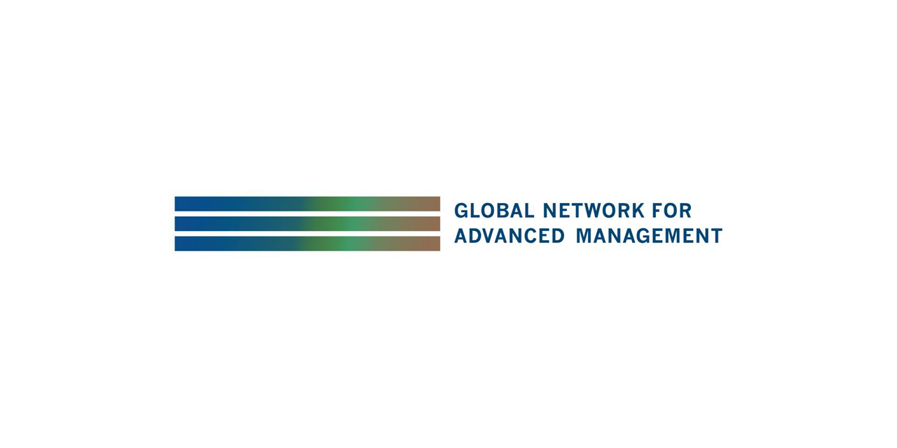 [Global Network] The Role of Capital Markets for Emerging Countries Event Logo
